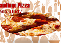 Case Study Analysis: Mandingo Pizza